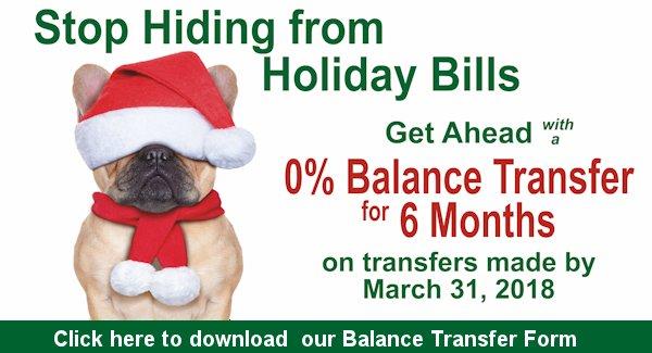 0% Balance Transfer Form download
